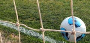 """Fútbol: el nuevo torneo de Primera se dividirá """"en dos zonas de 15 equipos"""""""