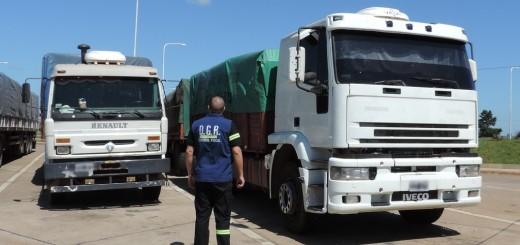 Frenaron el contrabando de más de seis mil toneladas de soja