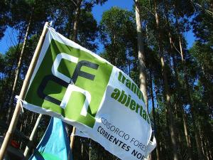Corrientes: Expondrán experiencias sobre producción forestal sustentable en el NEA