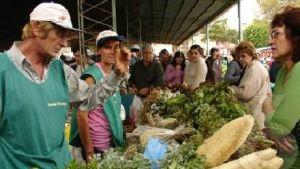 Indican que los productos de la Feria Franca tendrán un incremento cercano al 20 por ciento respecto al 2013