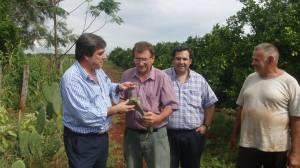 """Schiavoni: """"Los productores misioneros pueden lograr lo que se propongan"""""""