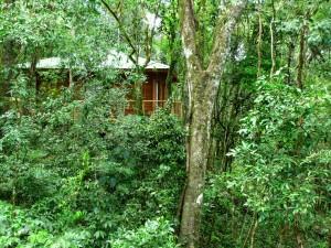 Se inauguró nuevo lodge en la selva a metros de los Saltos del Moconá