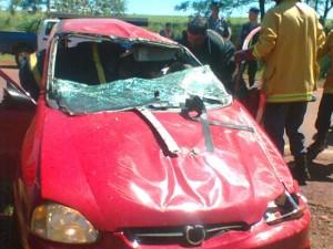 Los Helechos: se despistó un coche y el conductor falleció en el acto