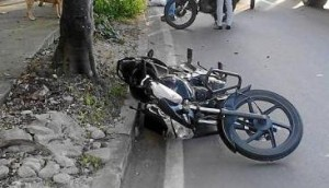 En Montecarlo murió un motociclista que tras pasar por un lomo de burro, chocó contra un árbol
