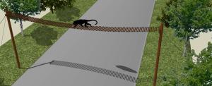 Construirán puentes pasafauna para proteger a las poblaciones de monos en Corrientes