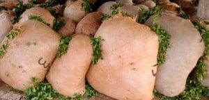 El Senado excluyó de la sesión un régimen de envasado en origen de la yerba mate