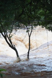 Tres muertos y un desaparecido en Misiones producto de las crecidas de los arroyos