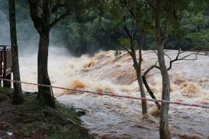 Temporal en Misiones y la región: 150 imágenes de la naturaleza desbordada por las lluvias