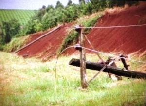 Temporal en Andresito provocó la caída de 8 postes y dejó sin luz al pueblo por 21 horas