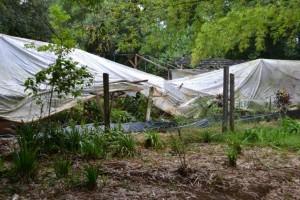 La tormenta ocasionó graves daños en el vivero municipal de Eldorado