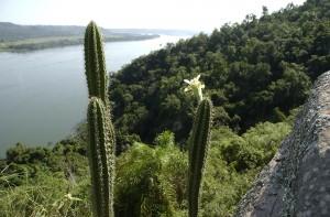 Parque Provincial Teyú Cuaré: un destino único por la belleza del paisaje, su recuperación ambiental y el valor cultural del sitio