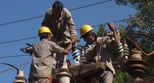 Trabajadores de EMSA fueron atacados por abejas mientras trabajaban en Candelaria