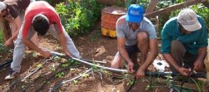 Desde el sector agrario destacan la aprobación de la ley familiar de agricultura