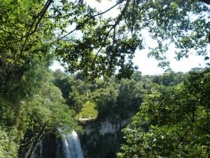 Ecología iniciará el fin de semana actividades en Jardín América en apoyo a la campaña AmbientArte