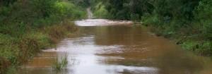 Hallaron el cuerpo sin vida del hombre que desapareció en el arroyo Yacutinga