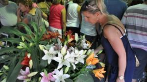 Capacitaciones gratuitas en Misiones Siempre en Flor