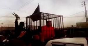 Video: el Estado Islámico exhibe un desfile de kurdos enjaulados que van camino a ser quemados vivos
