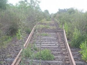 """""""Los trabajos en las vías del tren mesopotámico son un compromiso de la Nación"""" afirmó Almirón"""