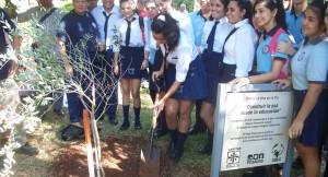 Estudiantes plantaron el Olivo de la Paz en la plaza 9 de Julio