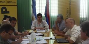 Buscan fortalecer la producción hortícola en la zona sur de Posadas