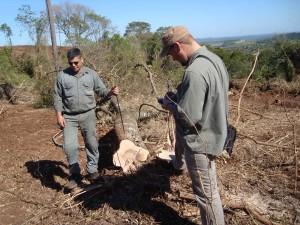 UPCN: Trabajadores de Control Forestal de Ecología reclaman soluciones laborales en el sector