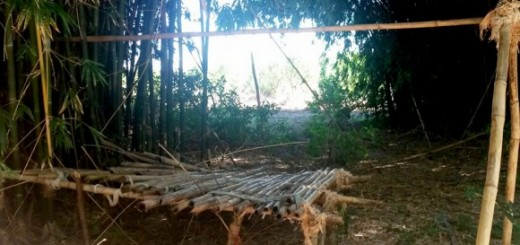 Se realizó una inspección ocular en el campo de Ramón Puerta, denunciado por trabajo esclavo