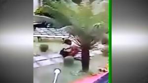 Salvaje crimen conmueve a Brasil: golpeó a su pareja contra el suelo y la remató a escopetazos