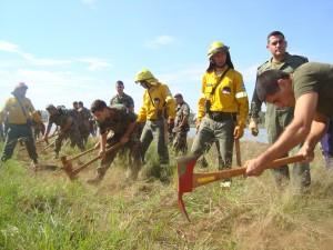 El Ejército y distintas fuerzas realizaron maniobras de instrucción para el manejo de incendios forestales