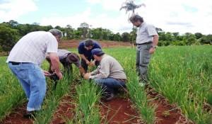 La Provincia entregará créditos a 500 productores e industriales de Misiones