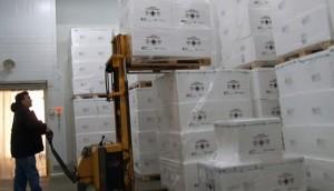 Ministerio de Salud recibió la primera partida de la vacuna antigripal para distribuir en todo el país