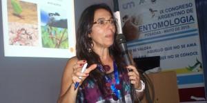 Congreso de Entomología: En la primera reunión de Mirmecología incentivaron la investigación de las hormigas