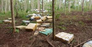 Hallaron abandonadas casi cuatro toneladas de marihuana