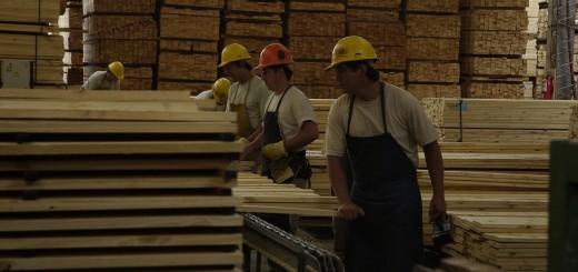La falta de competitividad cambiaria afectó a la industria forestal local