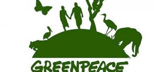 Greenpeace hace base en Misiones