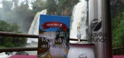 La yerba, producto preferido en el consumo de los argentinos