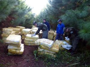 Gendarmería incautó más de cuatro toneladas de marihuana y detuvo a un hombre en diferentes procedimientos en Misiones