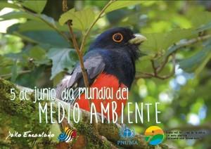 En el parque Salto Encantado se desarrollan actividades por el Día del Medio Ambiente
