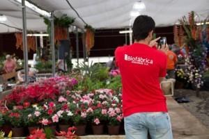 Biofábrica lanza un nuevo taller sobre plantas ornamentales