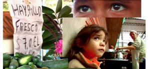 Laboratorio Guayrá: proyecciones y Cine Club para Niños en Encuentro Nacional de Ferias Francas
