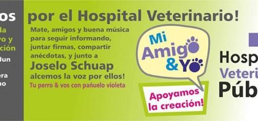 Protectores de mascotas piden por la creación de un Hospital Veterinario Público