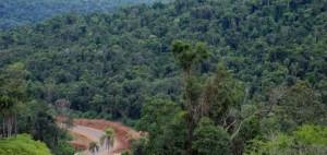 Garuhapé: policías y vecinos encontraron sano y salvo a un tarefero extraviado en medio de la selva