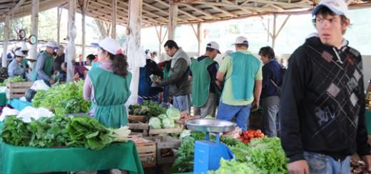 Este martes abrirán las Ferias Francas en Posadas y para el sábado realizarán la reubicación de la que funciona en la cancha de Guaraní