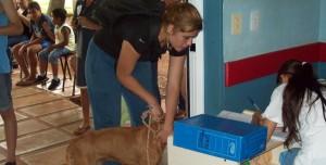 El quirófano móvil de castraciones de mascotas recorre los barrios