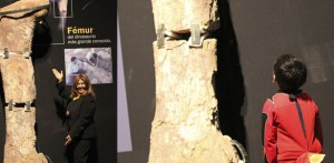 El dinosaurio más grande estará a la vista de todos en Chubut