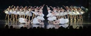 Vuelve El Lago de los Cisnes al Teatro Lírico