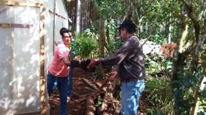 Viveristas de citrus  apuestan a la actividad con el acompañamiento de la provincia