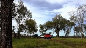 Está en marcha la organización de la 1era Expo Rural de Las Misiones
