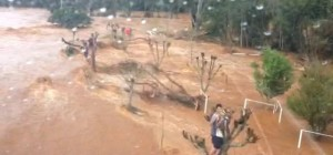 Video: impresionante rescate aéreo de una familia que estuvo tres horas sobre árboles por las inundaciones en Brasil