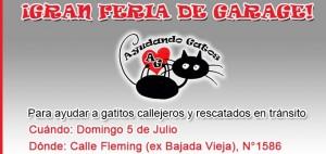 Invitan a Feria de garaje a beneficio de gatitos sin dueño