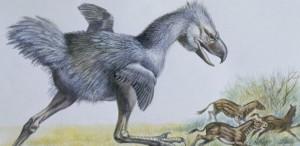 Hallan fósiles de un raro mamífero extinto en Termas de Rió Hondo